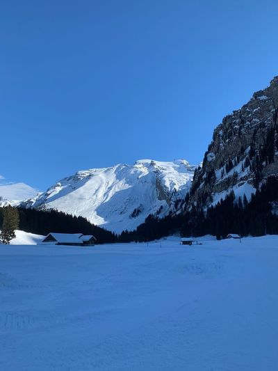 Mount Titlis in the sun Snow Cold Temperature Winter Mountain Scenics - Nature Beauty In Nature Sky Tranquil Scene Tranquility Snowcapped Mountain Tree Blue Clear Sky Nature Environment Mountain Range No People Non-urban Scene Covering