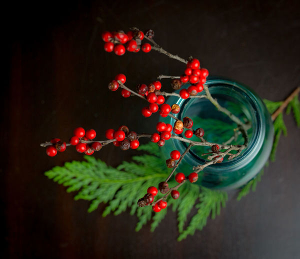 High Angle Close-Up Of Rowanberries In Jar Over Black Background