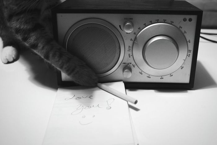 Radio Week On Eyeem Cat Cats Of EyeEm Love Love Is In The Air Love Declaration Love Note Weekly Eyeem Letter Love Letter Animal Themes Love Moments Home Is Where The Art Is WeekOnEyeEm Black And White Collection  Domestic Cat Domestic Animals The Week On EyeEm Cute Cute Cats Cute Message TakeoverMusic Love Yourself
