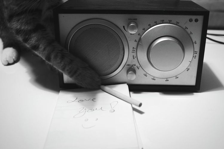 Radio Week On Eyeem Cat Cats Of EyeEm Love Love Is In The Air Love Declaration Love Note Weekly Eyeem Letter Love Letter Animal Themes Love Moments Home Is Where The Art Is WeekOnEyeEm Black And White Collection  Domestic Cat Domestic Animals The Week On EyeEm Cute Cute Cats Cute Message TakeoverMusic Love Yourself 10