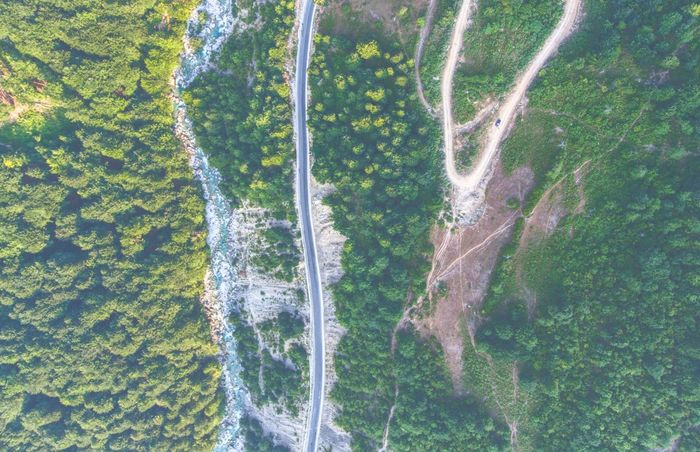 Green Color Backgrounds Nature Full Frame Pattern No People Day Aerial View Growth Beauty In Nature Close-up Outdoors Forest Tree Fragility Freshness DJI Phantom 4 Droneshot Road Tranquility Scenics Beauty In Nature Nature