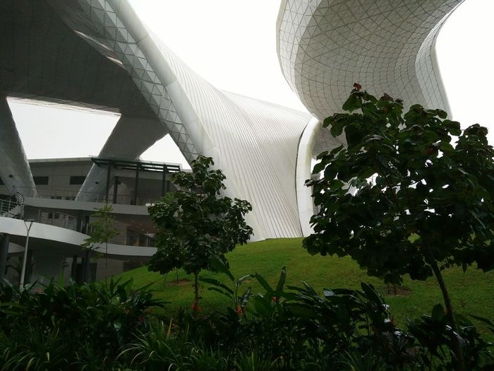 Building Structures Architecture Eco Sibutown University Campus Outdoors Minimalist Architecture