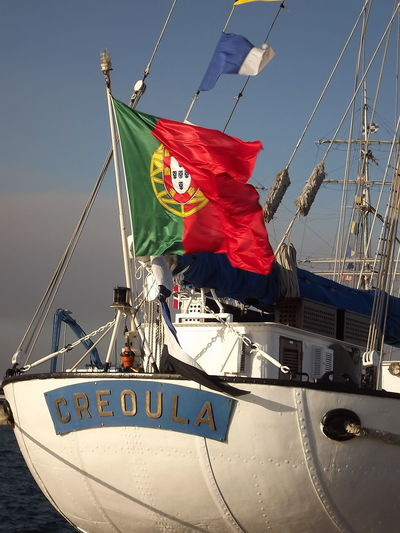 Creoula Day Flag Identity Ilhavo Low Angle View Mode Of Transport Multi Colored National Flag Portugal Red Sky Transportation Wind No Filter, No Edit, Just Photography