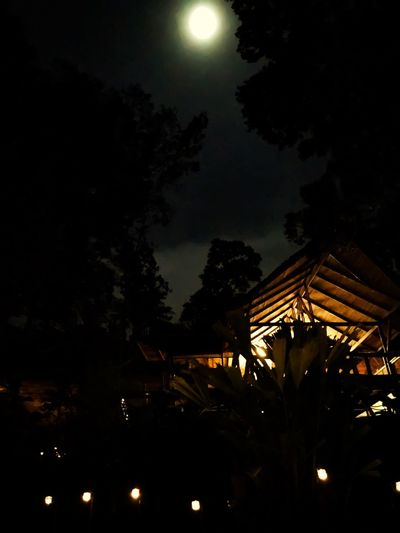 Night Illuminated Moon Low Angle View Tree Sky No People Outdoors Growth Built Structure Nature Architecture Costa Rica Jungle Luxury Lifestyles Nature Full Moon Dark Darkness And Light Outdoors Photograpghy  Outdoor Photography Outside Evening Enjoying Life