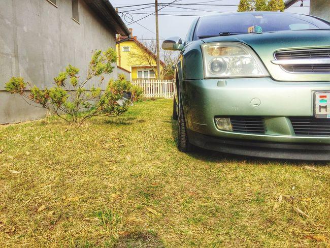 Lowlife Opel Vectra Vectra_C
