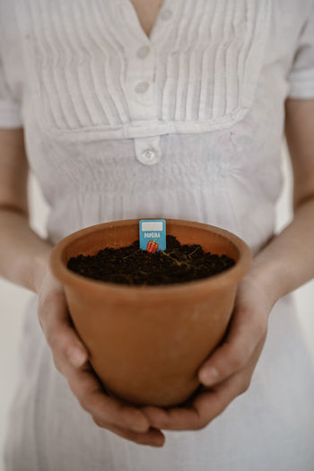 Close-up of woman holding ice cream in potted plant