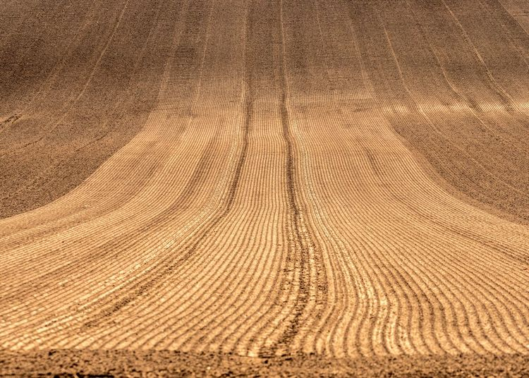 Agriculture Agricultural Field Agricultural Land Arid Climate Backgrounds Brown Climate Day Desert Environment Full Frame Furrows High Angle View Land Landscape Natural Pattern Nature No People Pattern Ploughed Field Rural Scene Sand Scenics - Nature Textured  Textured Effect