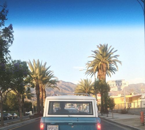 Let's escape Chasethesun California Palm Trees Living Life