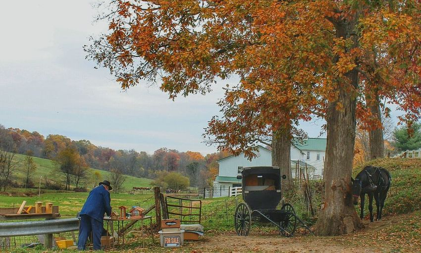 Amish Selling Homemade goods Roadside Amish Country Amish Buggy Horse Ohio, USA Amish Goods Amish Town Autumn🍁🍁🍁 Fall_collection Sky And Trees Capture The Moment Landscape_Collection Roadside America America Coast To Coast Simple Life