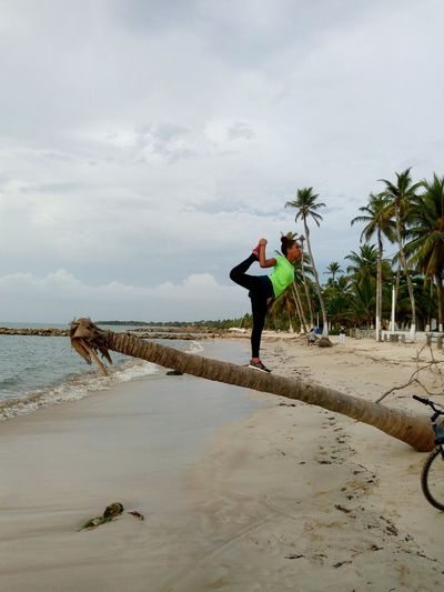 #bycicle Sportsman Full Length Palm Tree Men Water Sea Beach Sport Sand Standing Flexibility Bending Over Backwards Acrobatic Activity Golfer Yangshuo Yoga Push-ups Horizon Over Water Teeing Off Acrobat Exercise Mat Stretching