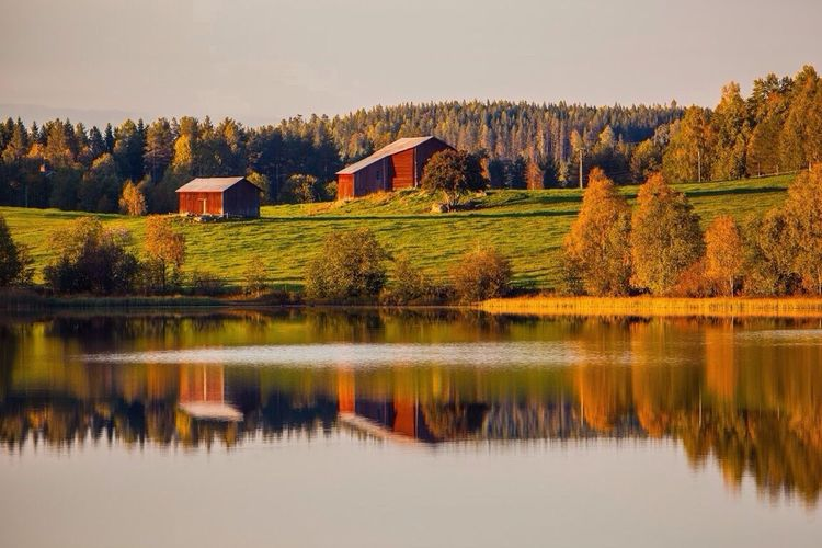 Colors Of Autumn EyeEm Best Shots - Nature MADE IN SWEDEN Water Reflection