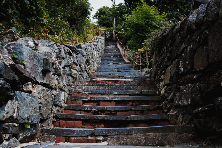 Ancient Civilization Architecture Built Structure Day Nature No People Outdoors Sky Staircase Steps Steps And Staircases The Way Forward Tree