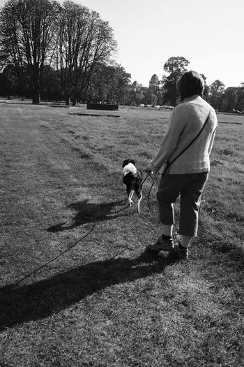 Full Length Tree Shadow Togetherness Rear View Clear Sky Casual Clothing Day Single Mother Domestic Animals Tranquil Scene Outdoors Tranquility Black And White Black & White Going For A Walk Woman Walking The Dog Walking Outdoor Photography Outdoors Photography Dogs Of EyeEm