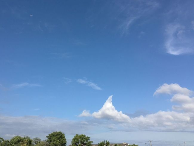 It's very fine and hot in this morning Cloud - Sky Fine Sky Beauty In Nature Moon Morning