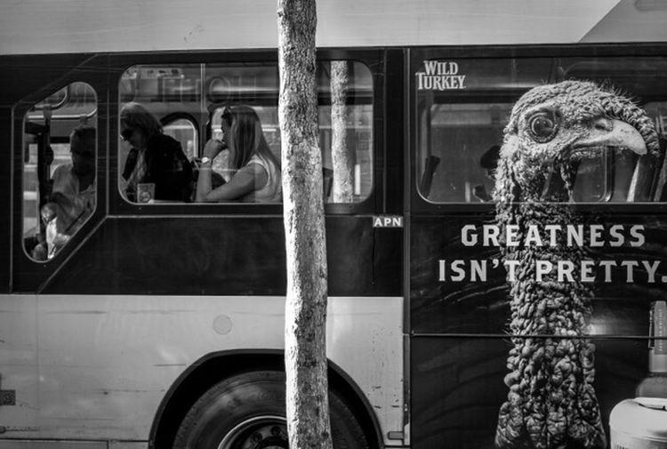 Greatness Isn't Pretty Australia Sydney Nsw Street Streetphoto_bw Streetphotography Fashion Style Monochrome Blackandwhite People Candid Urban City Bus Advertisement FujifilmXPro2 Xf35mmf2 Fujiusers Check This Out