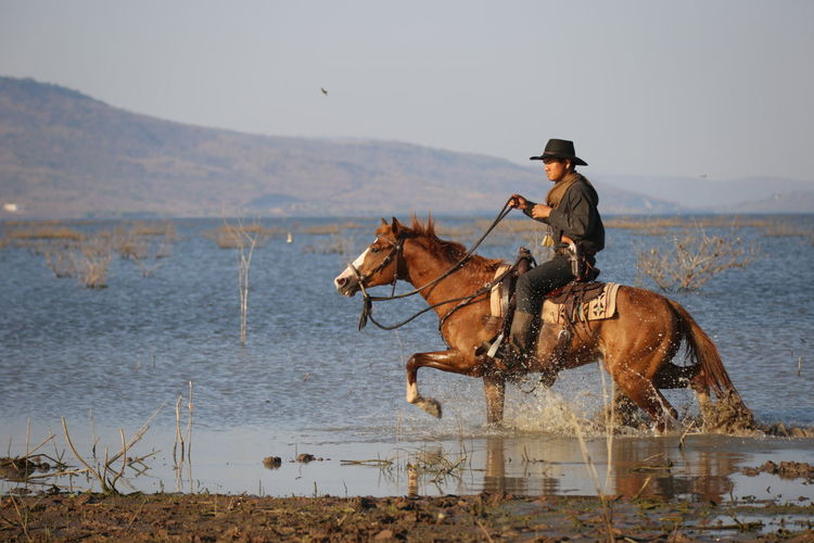 horse, travel, adventure, cowboy, western, horseback riding, horse riding, wanderlust, globetrotter, lifestyle Cowboy Cowboy Hat Outdoors Riding Day Horse Livestock Activity Nature Horseback Riding Vertebrate One Animal Animal Wildlife One Person Real People Water Pets Hat Domestic Animal Animal Themes Domestic Animals Mammal