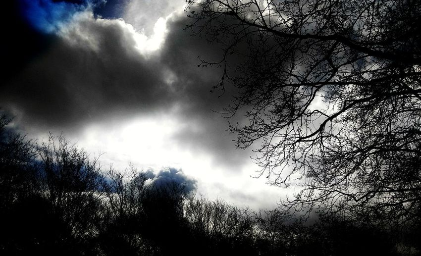 Countryside Rural Scene Country Life Cloudscape Clouds Sillouette Of Trees Sun And Clouds Blue Sky Blackcatsofinstagram Puffy Clouds Sunshine Cloudy Country Cloud - Sky Rural America Sun