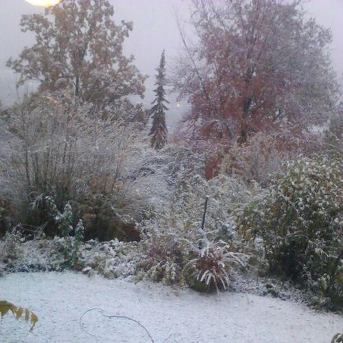 #Schnee #Snow