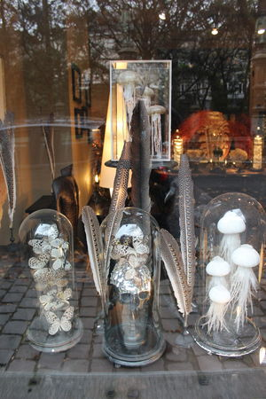 Curious shopping Brussels Shopping ♡ Jellyfish Jelly Fish Butterfly White White Color Skull Plated Silver Plate Silvery Feather  Plumas Mariposa Blackandwhite
