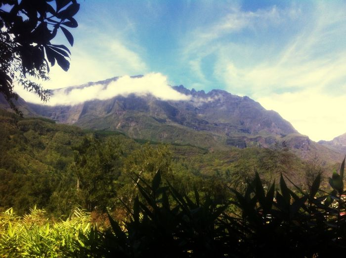 Reunion: randonnée sentier hell-bourg/ bélouve. Expérience. Relaxing