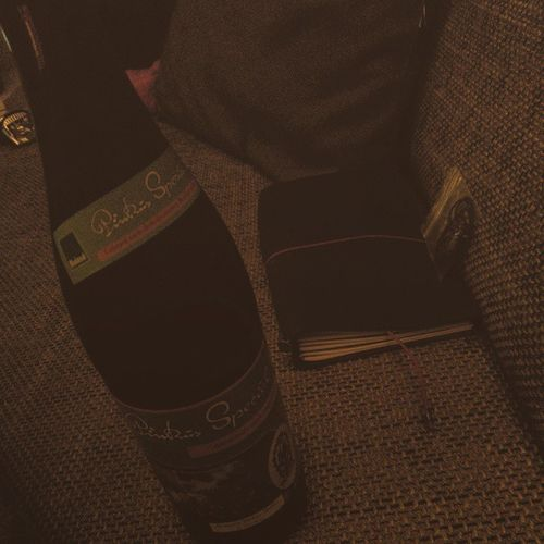 Pinkus auf Couch... Feierabend Gbook Notebook beer fresh