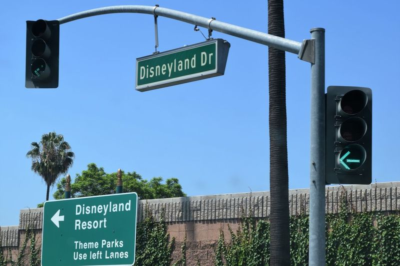 Disneyland Trip Blue Clear Sky Communication Day Direction Green Color Guidance Low Angle View No People Outdoors Road Sign Signboard Sky Street Name Sign Text Tree Welcome Sign Western Script