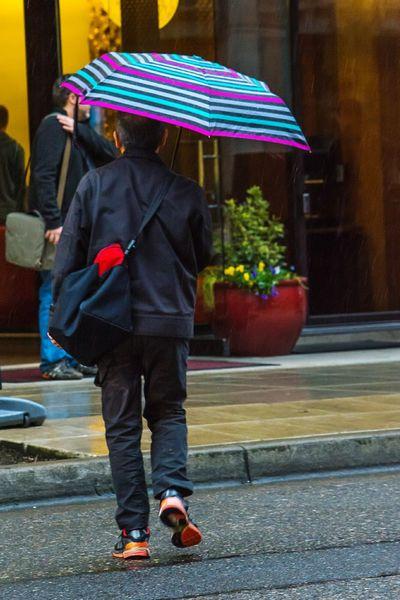Rainy Days☔ , Colorful Umbrella