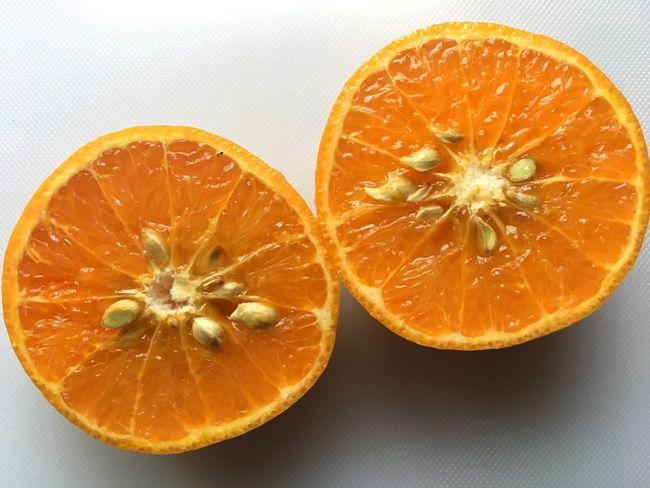 Fruit Orange - Fruit Orange Color Citrus Fruit SLICE Healthy Eating Studio Shot Food And Drink Freshness Cross Section Food No People Halved Close-up Blood Orange Indoors  Everyday Orange