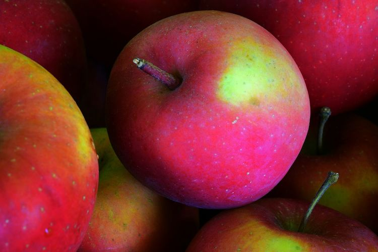 @home Sweet Home Autumn Colors Apples