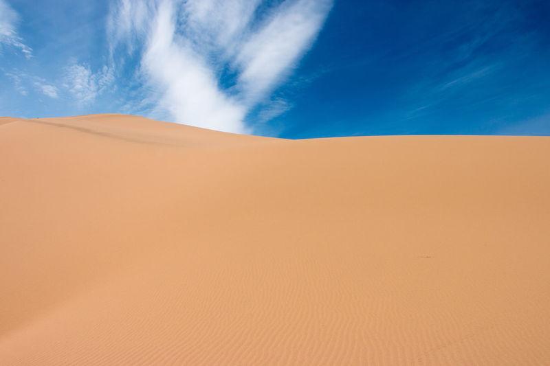 Gobi Desert sand dune. Khongoryn Els, Gobi, Mongolia. Arid Climate Arid Landscape Copy Space Desert Extreme Terrain Gobi Gobi Desert Horizon Over Land Landscape Mongolia Non-urban Scene Physical Geography Remote Sand Sand Dune Tranquil Scene