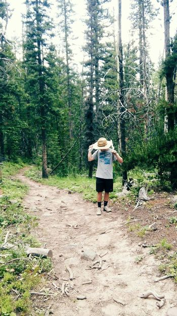 Hidden Gems  Forest Trees Mountain Forest Tree Hiking Enjoying Life Check This Out Taking Photos Hello World Relaxing Ahhh Hiking Trails Handsome Man
