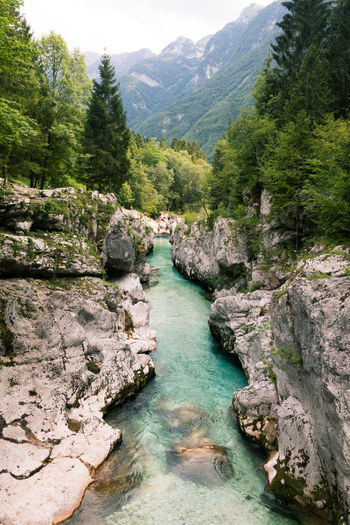 Balkan Roadtrip Beauty In Nature Day Europe Flowing Flowing Water Forest Green Color Land Mountain Mountain Range Nature No People Non-urban Scene Outdoors Plant River Roadtrip Rock Rock - Object Scenics - Nature Solid Stream - Flowing Water Tranquil Scene Tranquility Tree Water