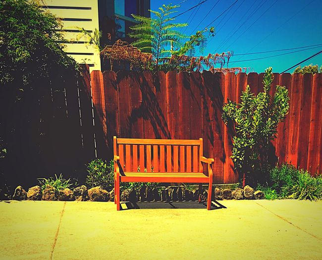 The Street Photographer - 2016 EyeEm Awards Hanging Out Blue Sky Colorsplash Bench Seat Urbangarden EyeEm Gallery EyeEm Best Shots Hayes Valley Showcase June Colors And Patterns
