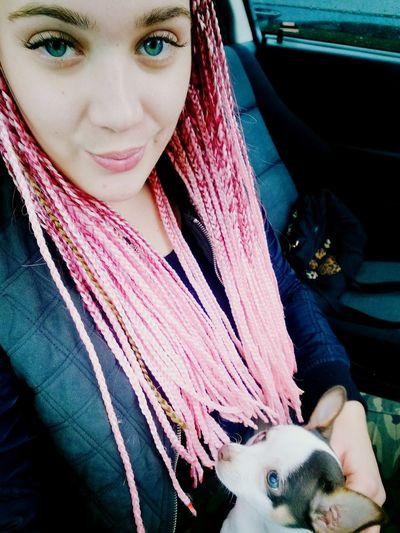 Afro Hair Love Hair My Dog Me Love Dog Chiuahua Love ♥ Portrait Beautiful Woman Beauty Headshot