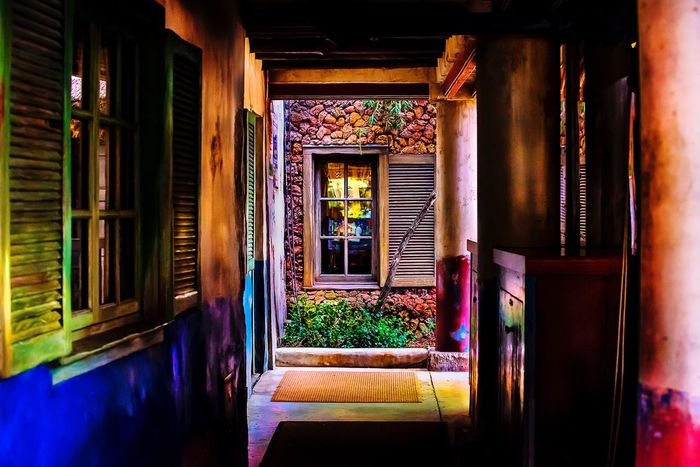 Architecture Door Built Structure Plant Doorway No People Indoors  Day Nature Outdoors Window Colors Dramatic Light And Shadow City Streetphotography DisneyWorld Reflection Entrance Restaurant EyeEm Abstract Paint Exterior Photography
