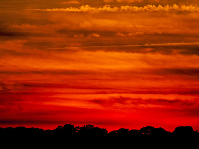 Cloudscape Love Red Passion Romantic Sunset Silhouettes Sunset_collection Beauty In Nature Cloud - Sky Clouds And Sky Dehesa Dusk Energy Environment Idyllic Landscape Nature Orange Color Passion Red Sky Scenics Silhouette Sky Sun Sunset