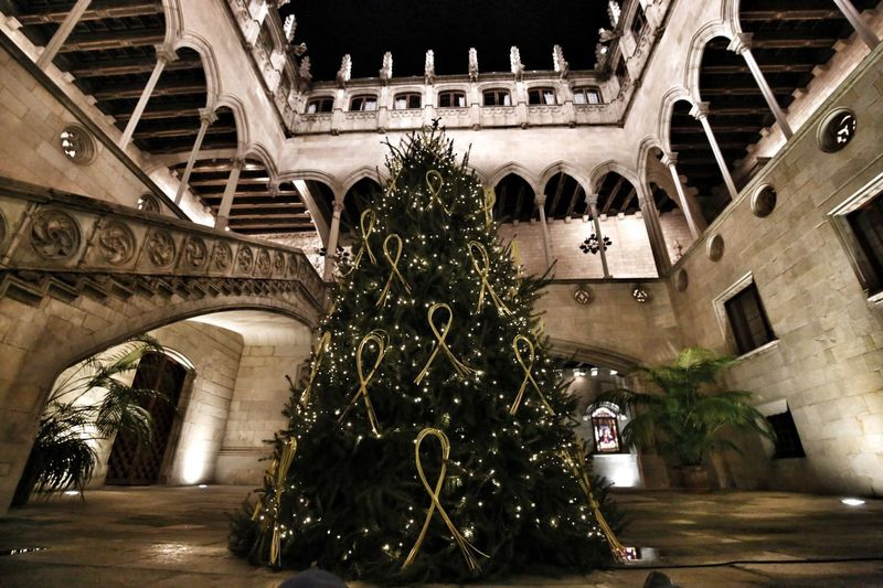 Architecture Built Structure Building Exterior Arch Tree Night Christmas