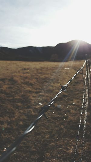 Landscape Outdoors Mountain Sky No People Close-up Nature Barbed Wire Near Focus Focus On Foreground Rustic Scenic Fence Nature Photography Nature_collection Optoutside TheGreatOutdoors Colorado Photography Viewcolorado Scenics ExploreEverything Beauty In Nature Straight Lines Greettheoutdoors Wanderlust EyeEmNewHere