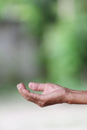 Old Senior Hand