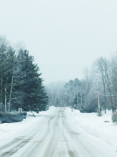 Winter Way Snow Winter Cold Temperature Tree Weather Nature Covering Tranquility Tranquil Scene Beauty In Nature Scenics Outdoors No People The Way Forward Day Clear Sky Snow Covered Landscape Snowing Road