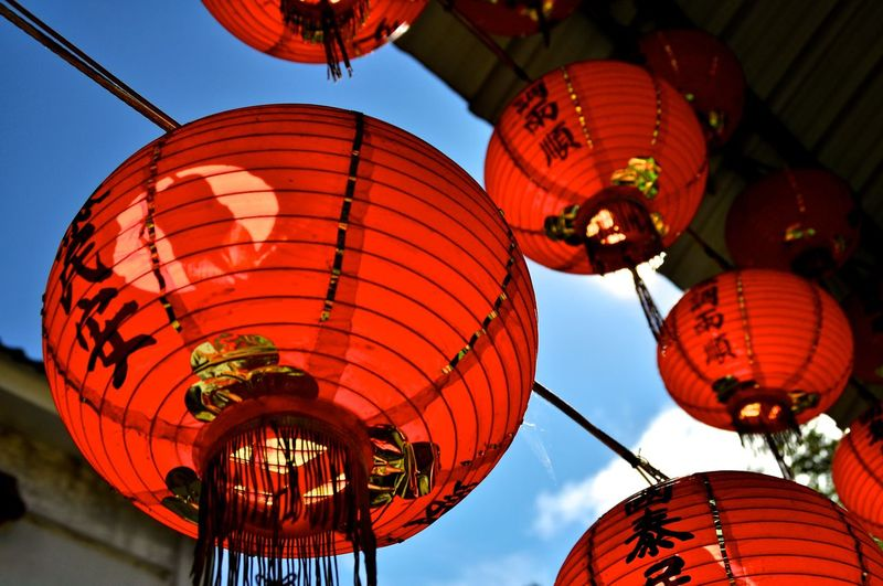 Chinese Lantern Lantern Travel Cultures Travel Destinations Taiwan Alishan,Taiwan Alishan Mountain EyeEmNewHere