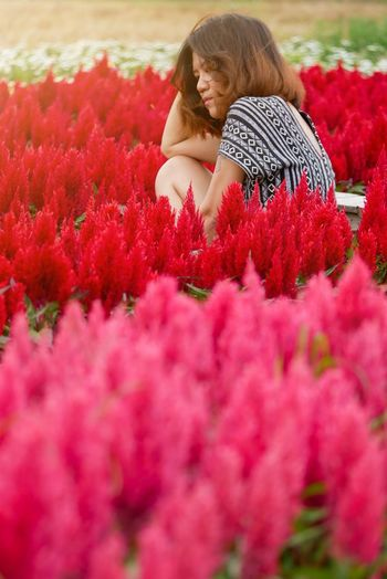 Rear view of girl with red flowering plants