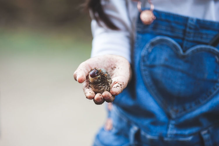 Midsection of girl holding insect