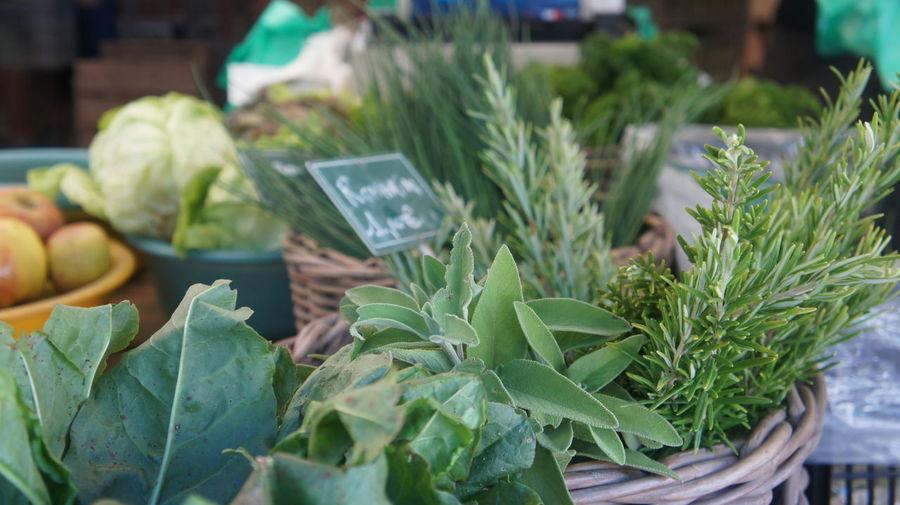Close-up of leaf vegetables at market