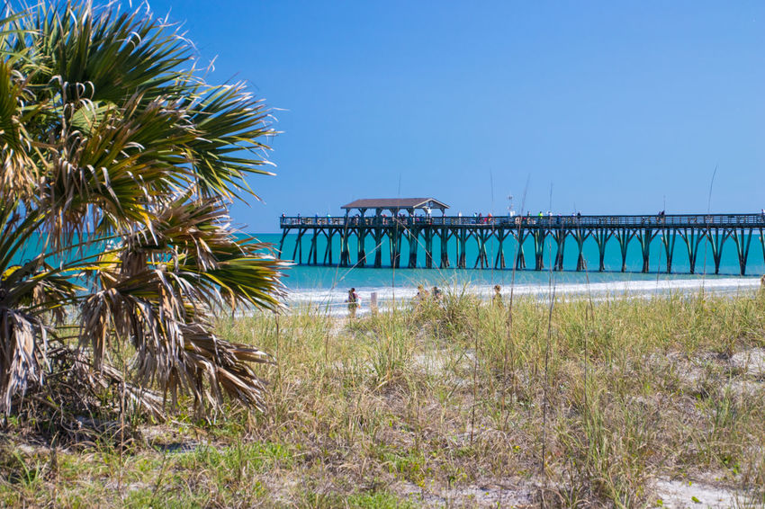 Pier at Myrtle Beach State Park Architecture Beach Beauty In Nature Blue Building Exterior Built Structure Clear Sky Copy Space Day Grass Growth Land Nature No People Outdoors Palm Tree Plant Sky Tropical Climate Water