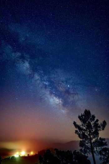 Milkyway in the Algarve Portugal Constellation Universe Stars Milkyway Algarve Portugal Astrophotography Night Star - Space Astronomy Space Sky Beauty In Nature Galaxy Tree Scenics - Nature Nature Milky Way Star Field Tranquil Scene No People Star Tranquility Idyllic