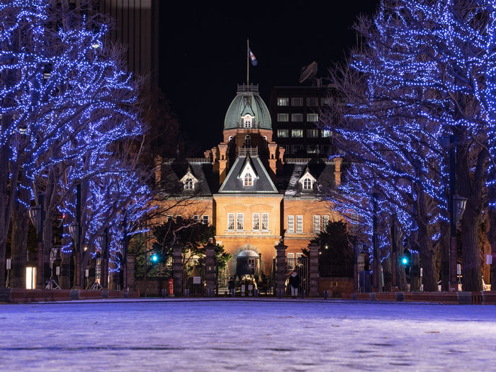 Building Exterior Architecture Built Structure Illuminated Tree Night Plant Winter Building Nature Cold Temperature Celebration Religion Travel Destinations Snow City Christmas Place Of Worship No People Outdoors