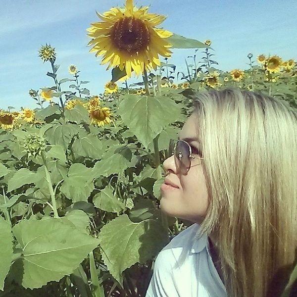 Seja como o girassol: volte-se sempre na direção do sol, deixando as sombras atrás de você. Girassol Agrotins Embrapa Jeitosuhdeser