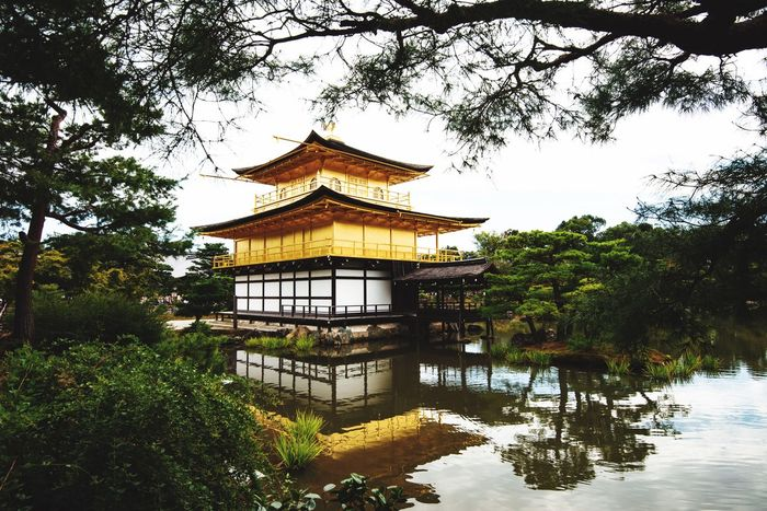 Plant Built Structure Tree Architecture Building Exterior Building Nature Sky Water Religion No People Lake Place Of Worship Belief Growth Day Reflection Outdoors EyeEmNewHere