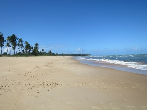 Bahia Salvador Beach Clear Sky Nature No People Sand Secluded Beach Sky Tranquil Scene Tranquility Water